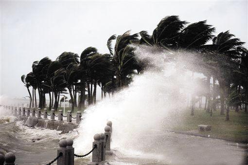 腾讯滨海大厦 台风