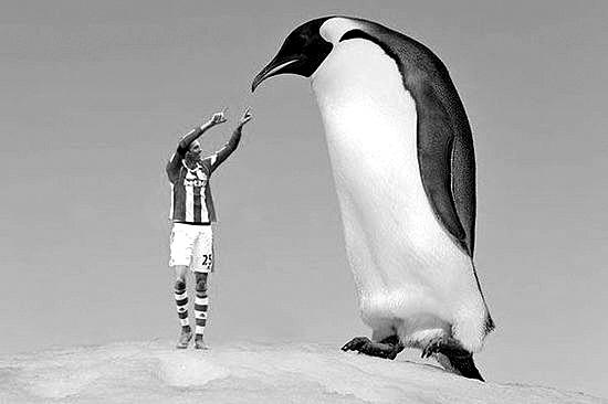 阿根廷科学家在南极地