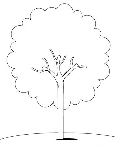 植树简笔画图片大全