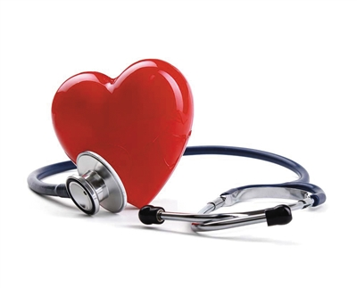 心脏内部结构图及解说